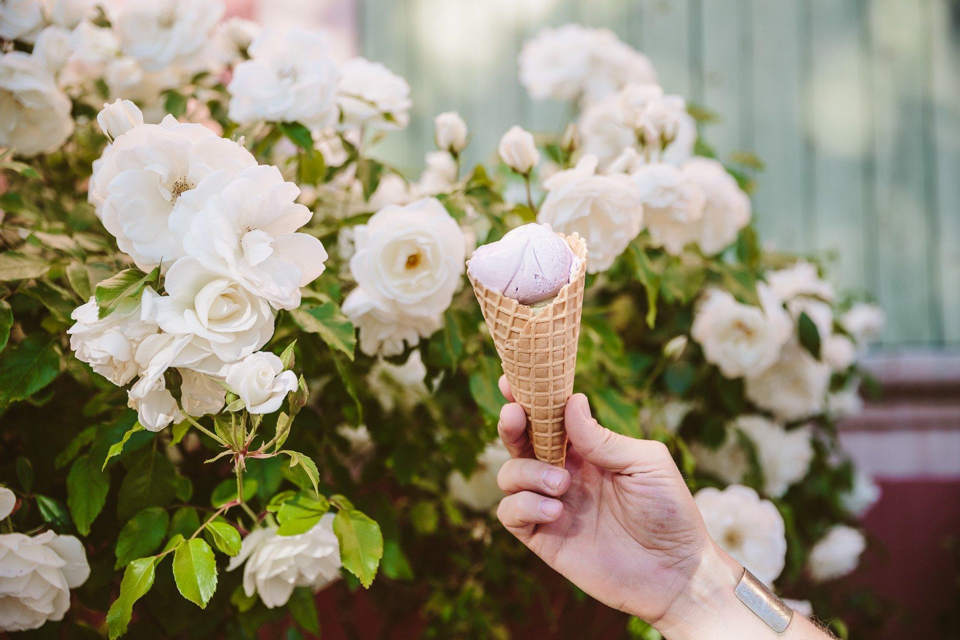 Lavender ice cream in Provence