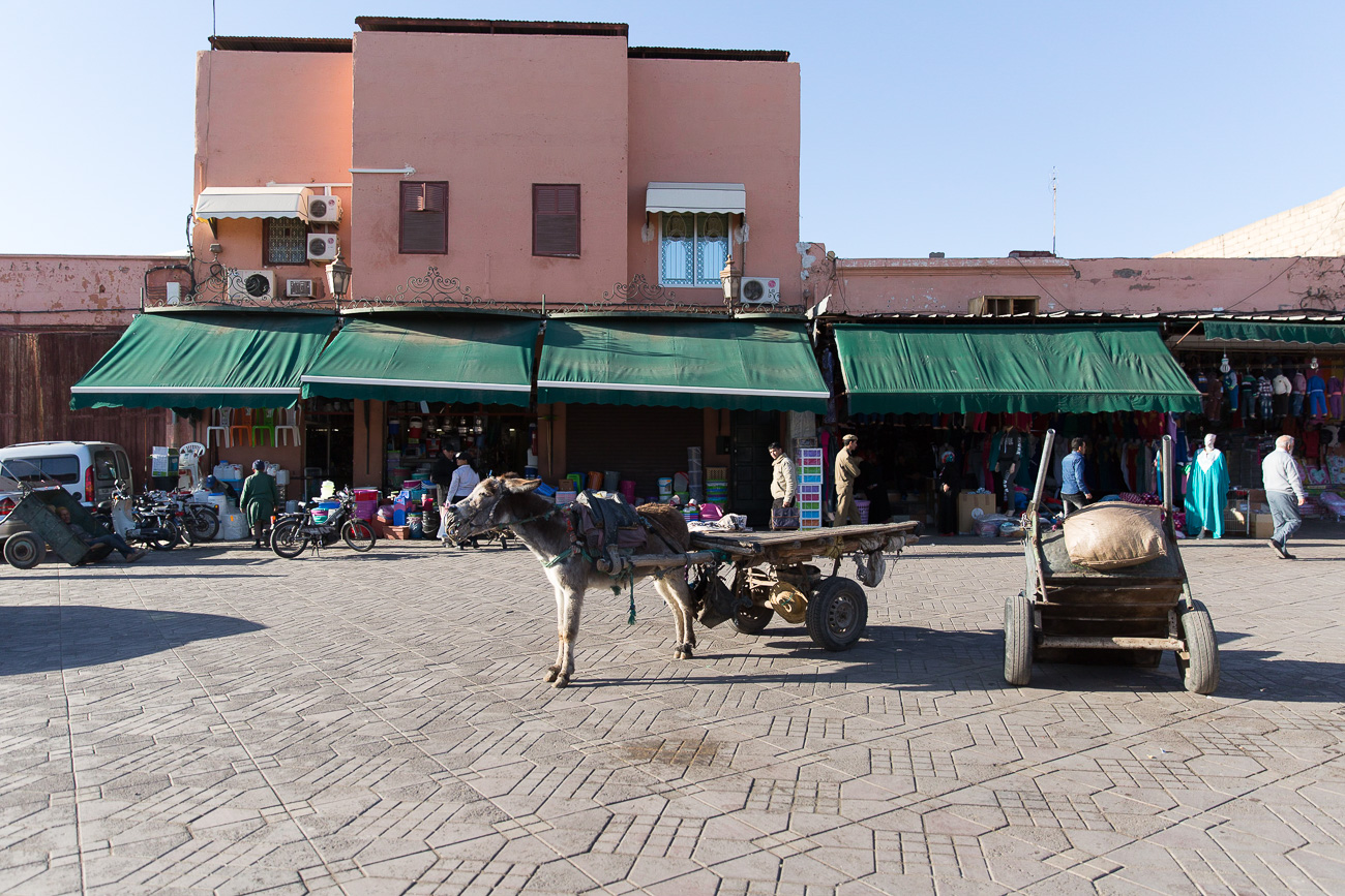 First impressions of Marrakech's Medina