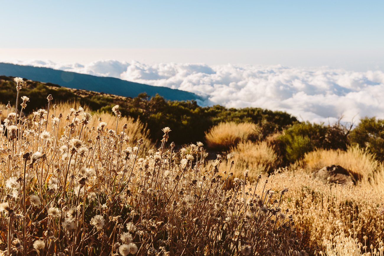 El Teide is always above the clouds