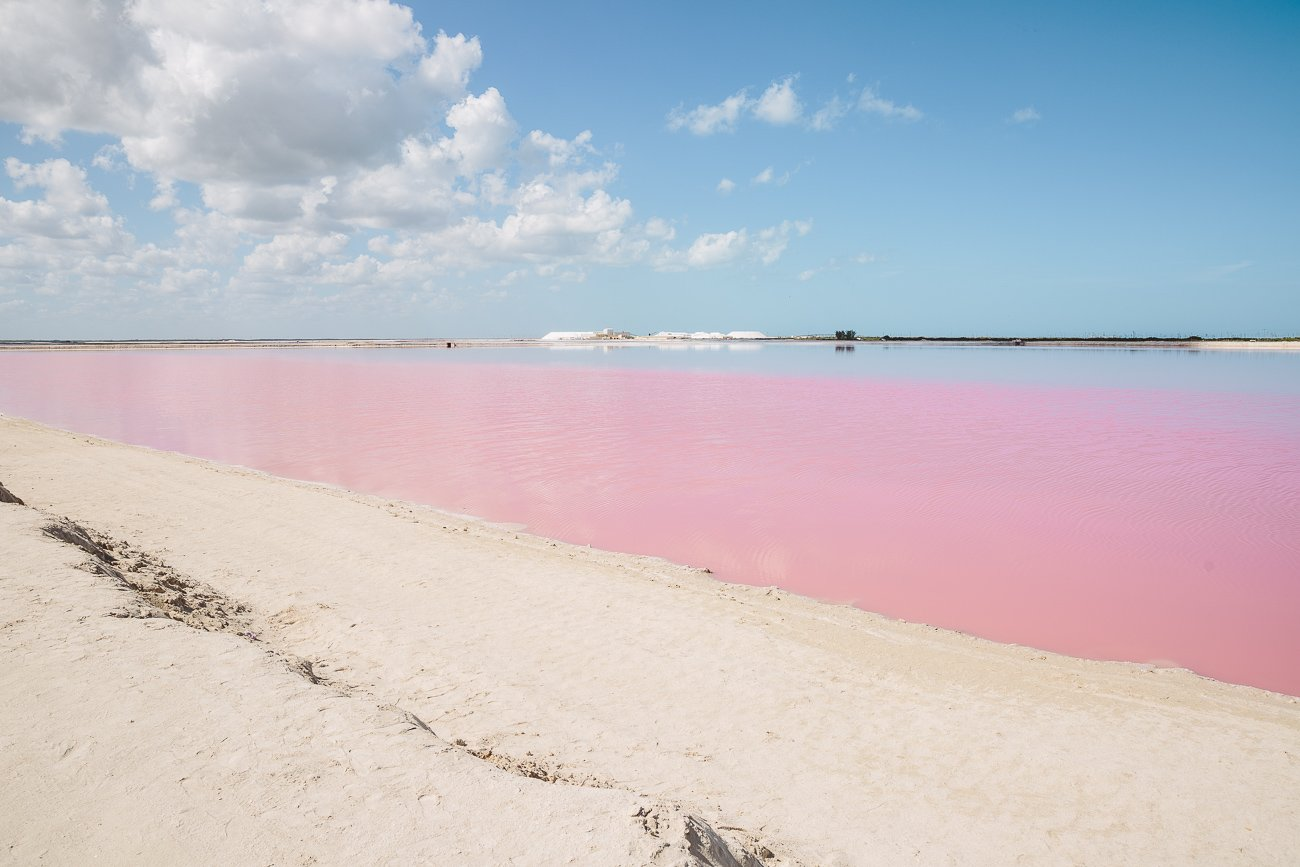Pink Lagoon at Las Coloradas Yucatan Mexico