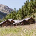 Gampe Thaya in Summer Ötztal Tyrol Austria