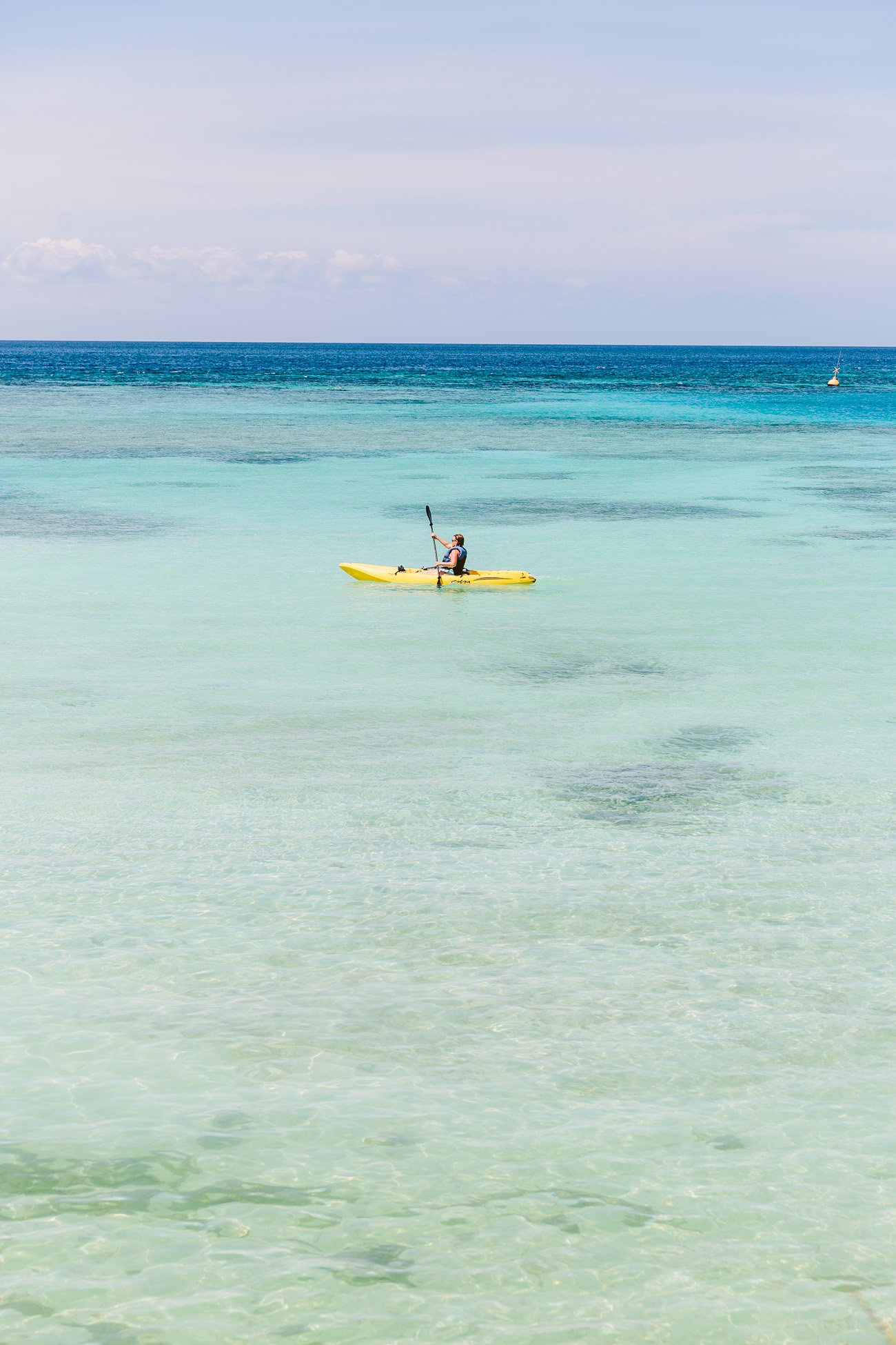Kayak tour at Mangel Halto Beach Aruba