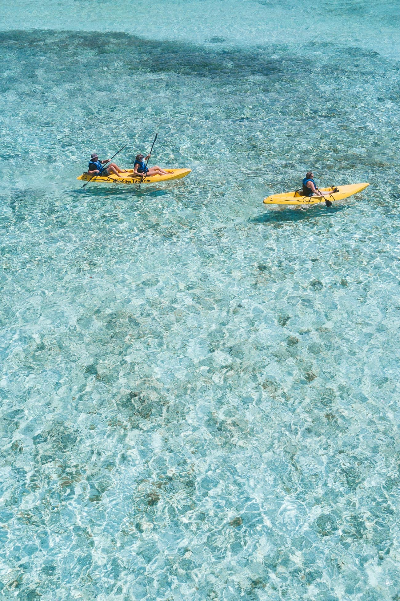 Kayaking at Mangel Halto Aruba
