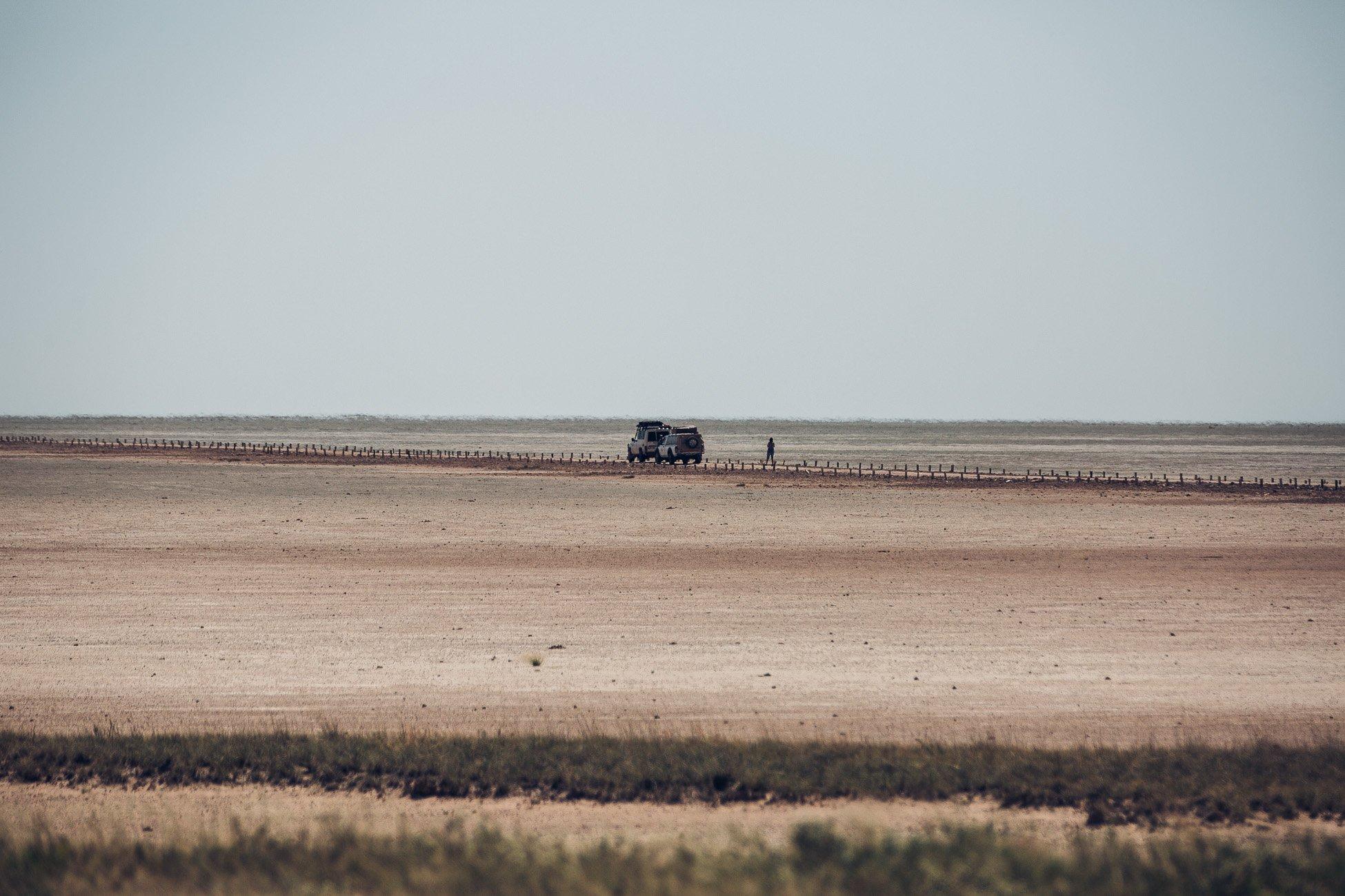 Self-driving safari at Etosha National Park