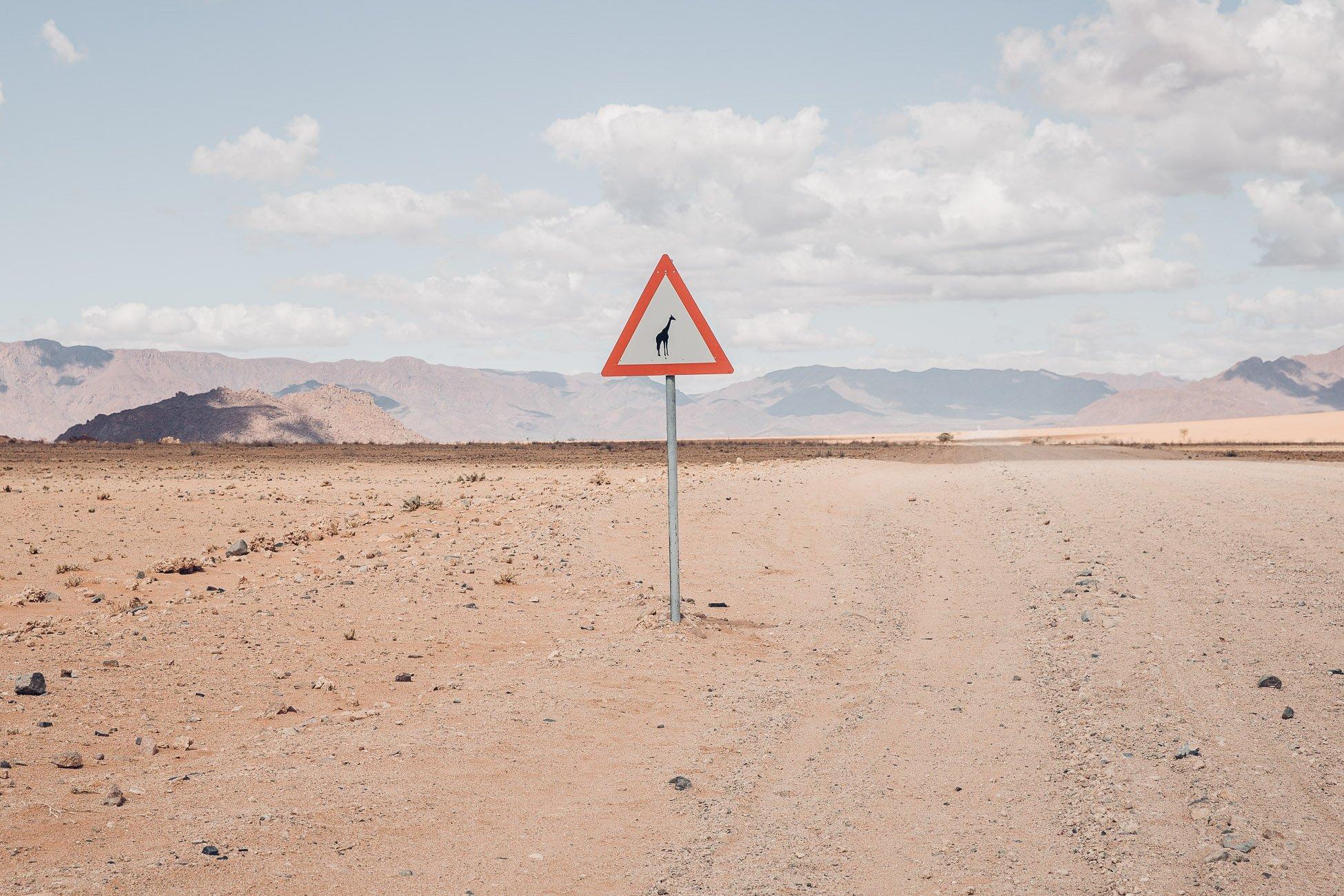 Giraffe crossing in Namibia