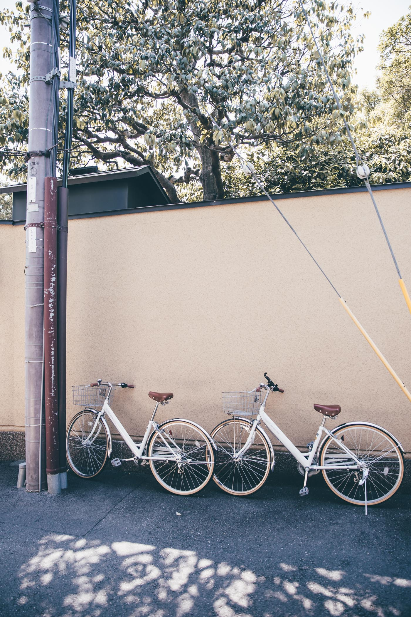 Our rental bicycles in Kyoto