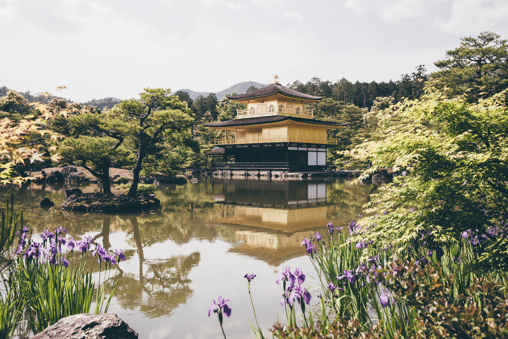 The golden temple Kinkaku-Ji in Kyoto