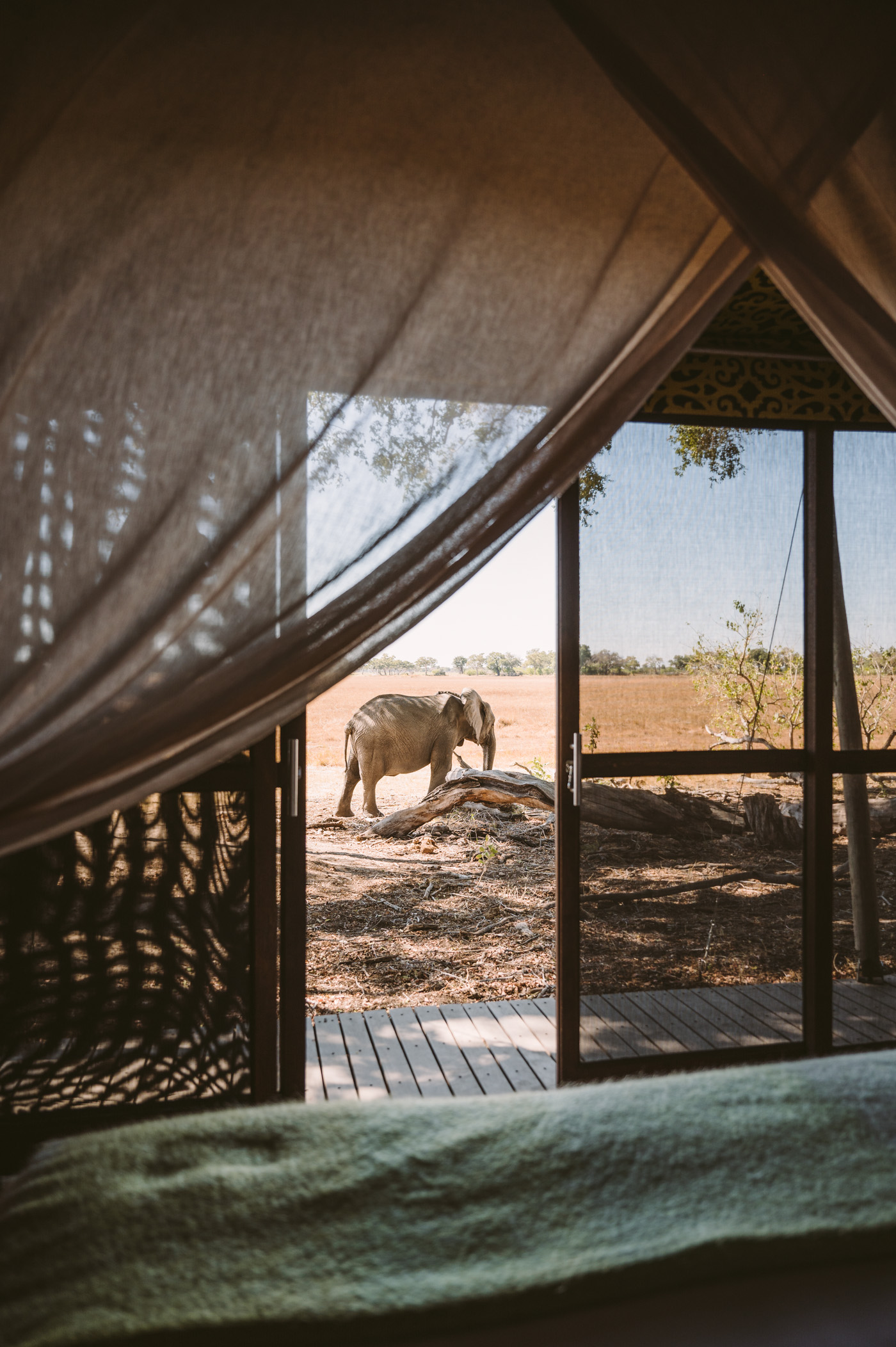 andBeyond Xaranna Okavango Delta Botswana