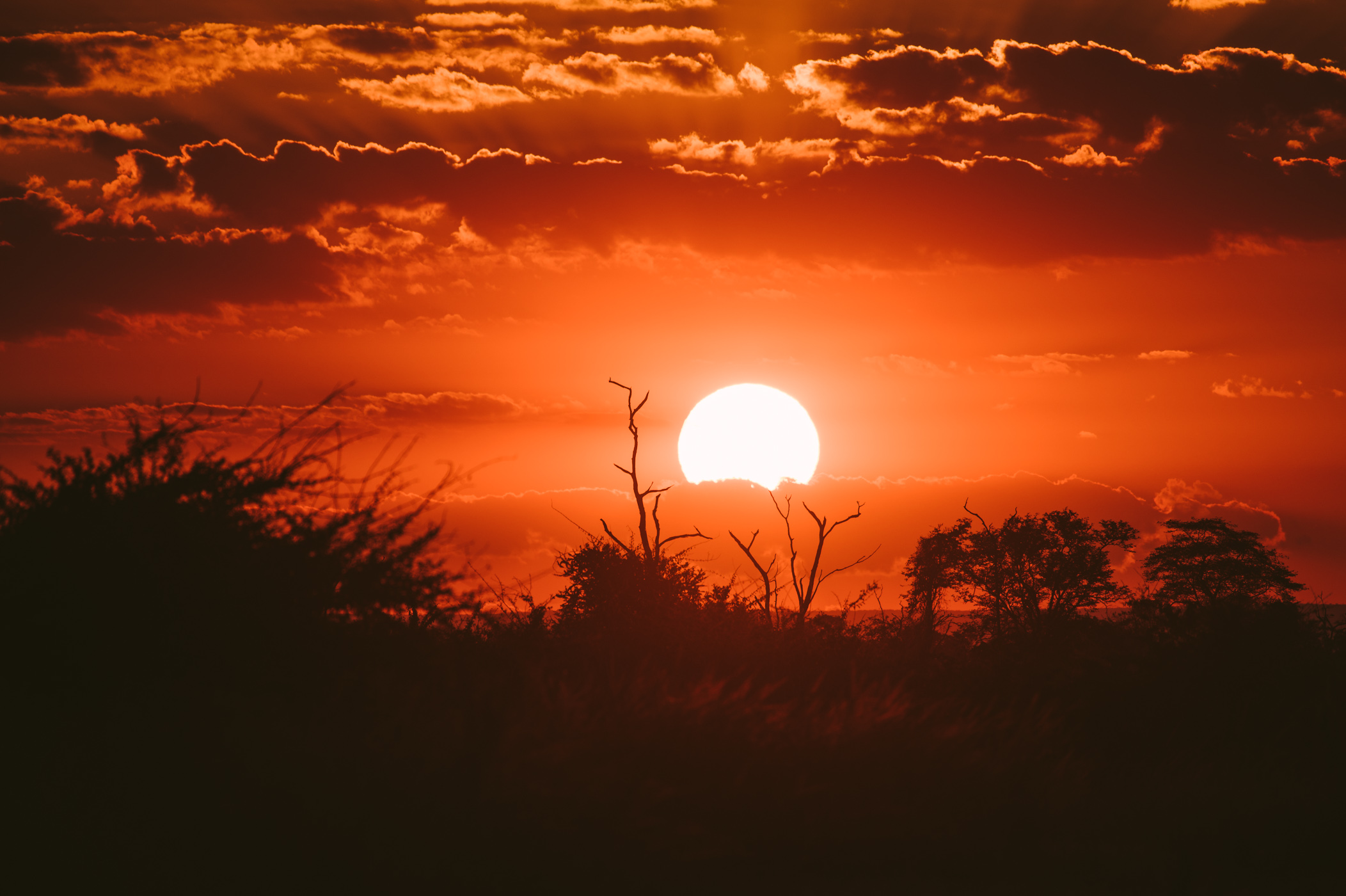 Sunset in South Luangwa National Park Zambia