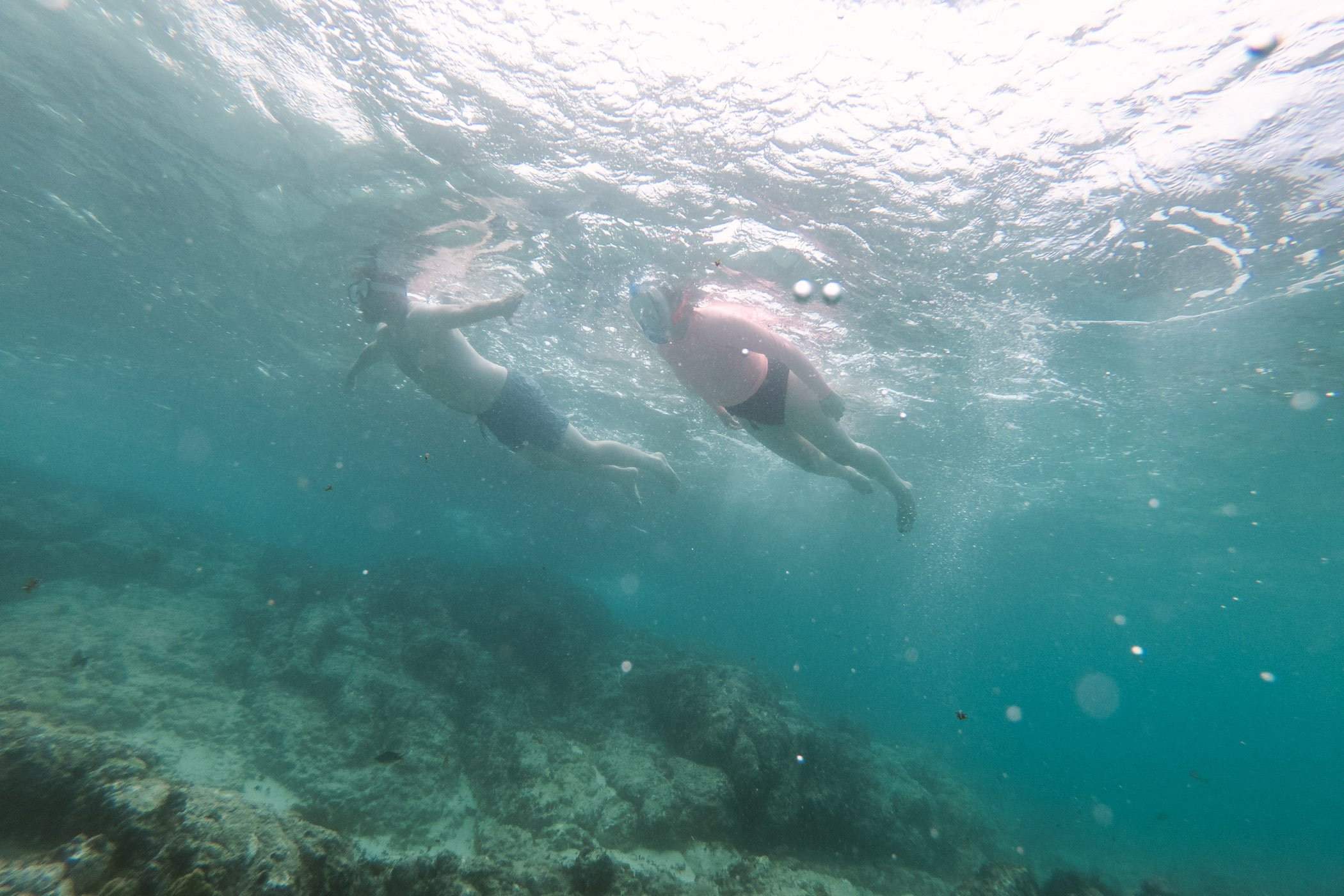 Snorkeling on Boa Vista