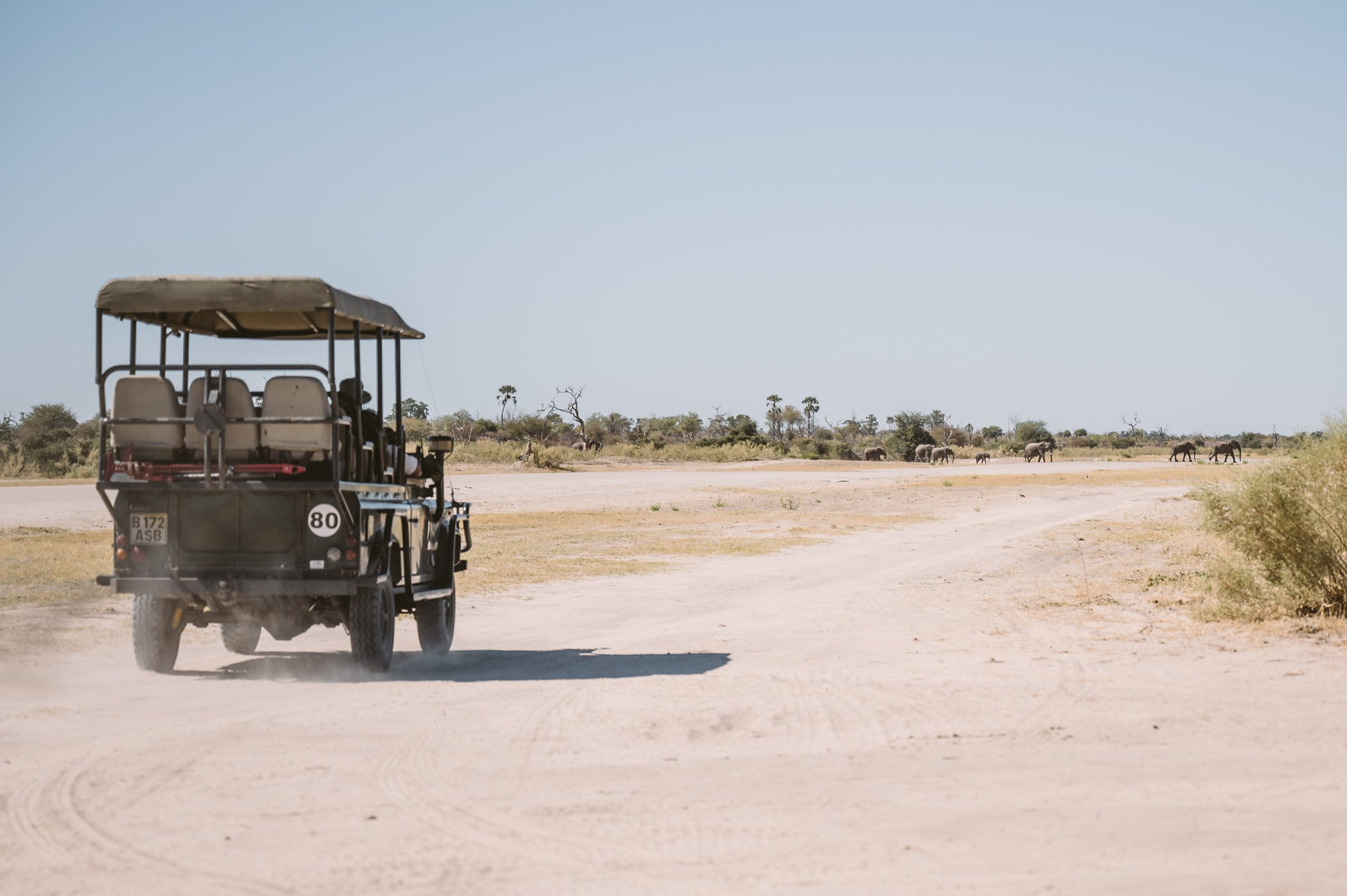 Elephants crossing the airstrip in Botswana at Sandibe