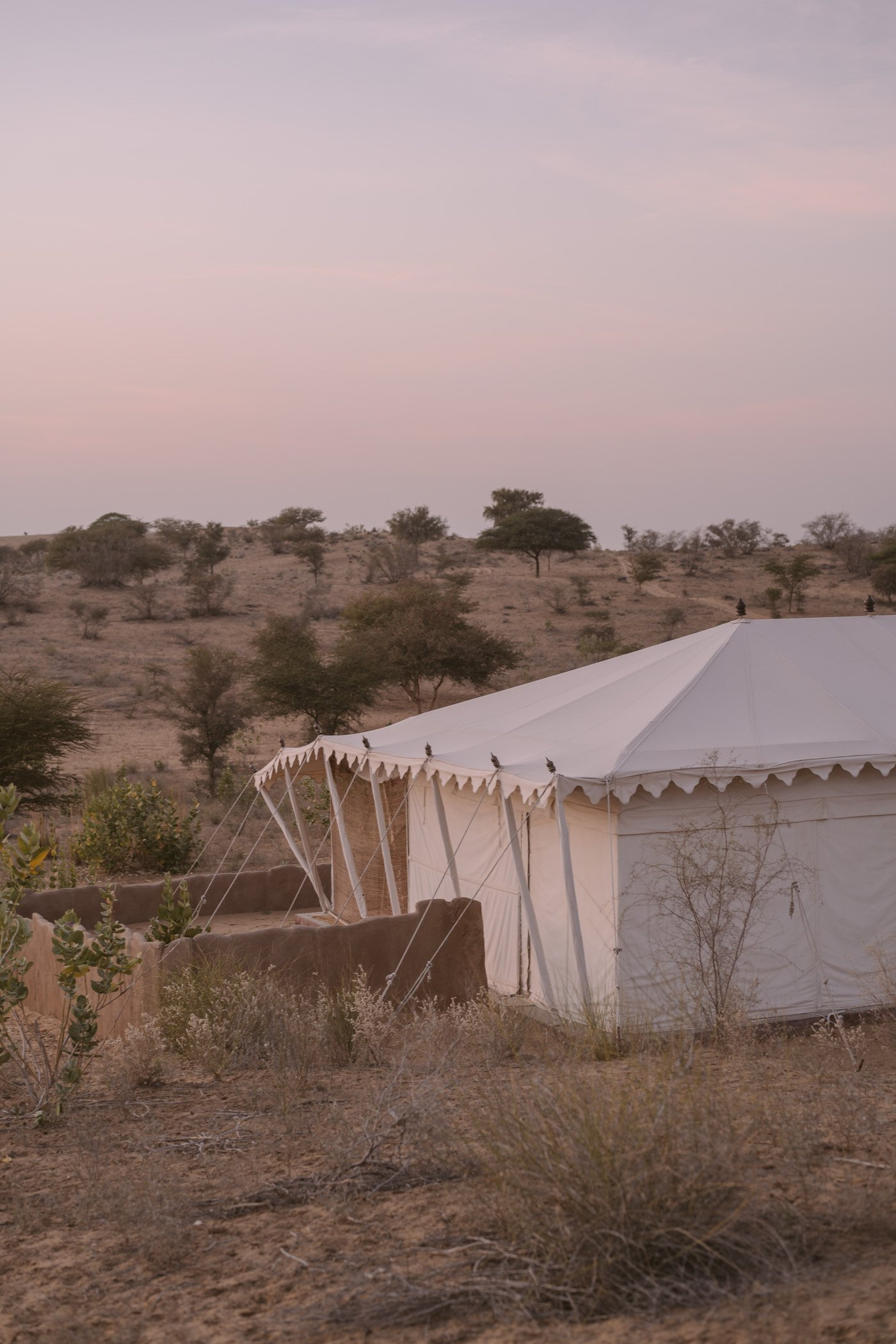Desert camp in Rajasthan
