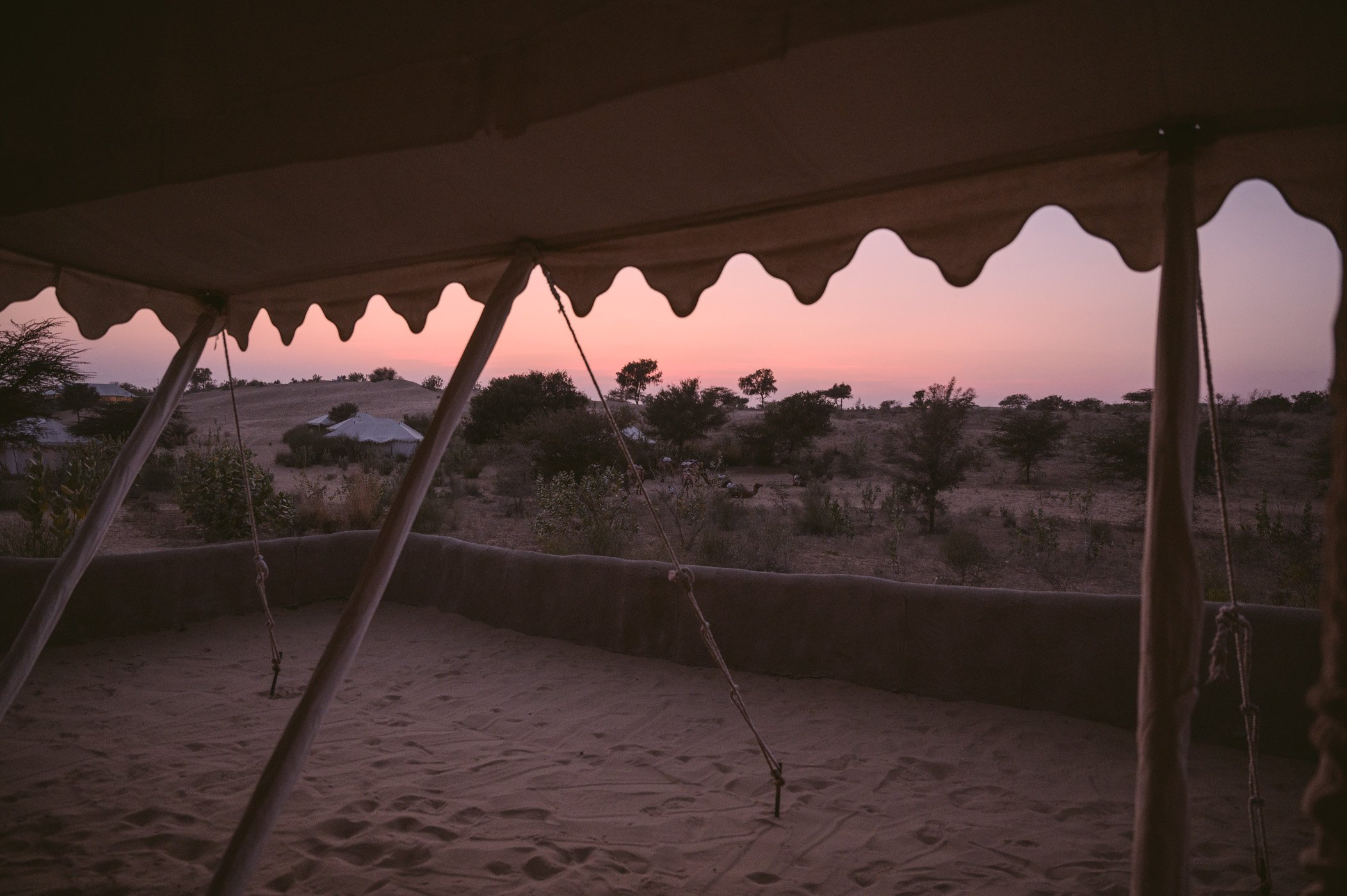 Before sunrise in the Thar desert of Rajasthan