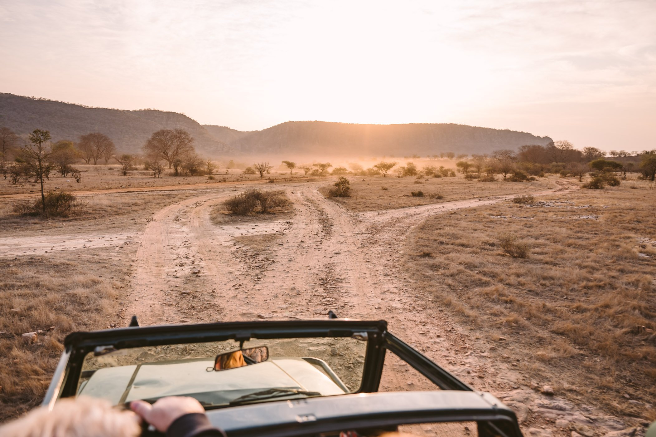 Ranthambore National Park India Rajasthan