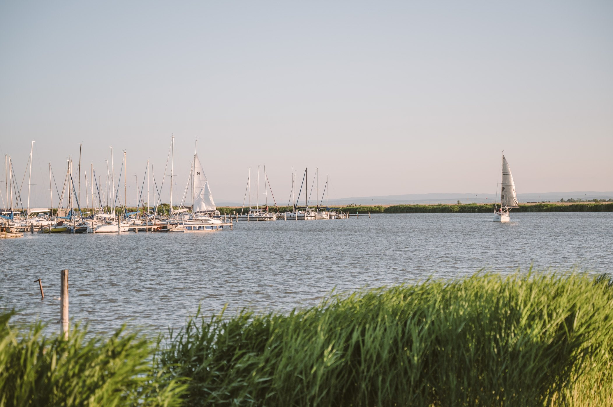 Yacht harbour of Jois at lake Neusiedlersee