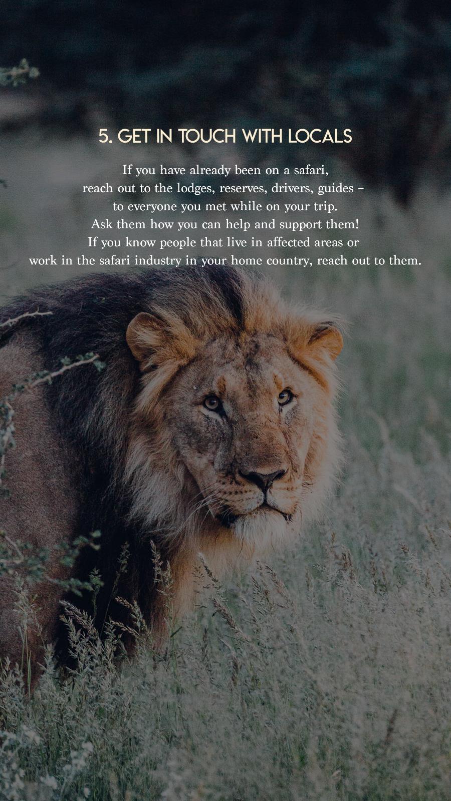 Safaris on hold