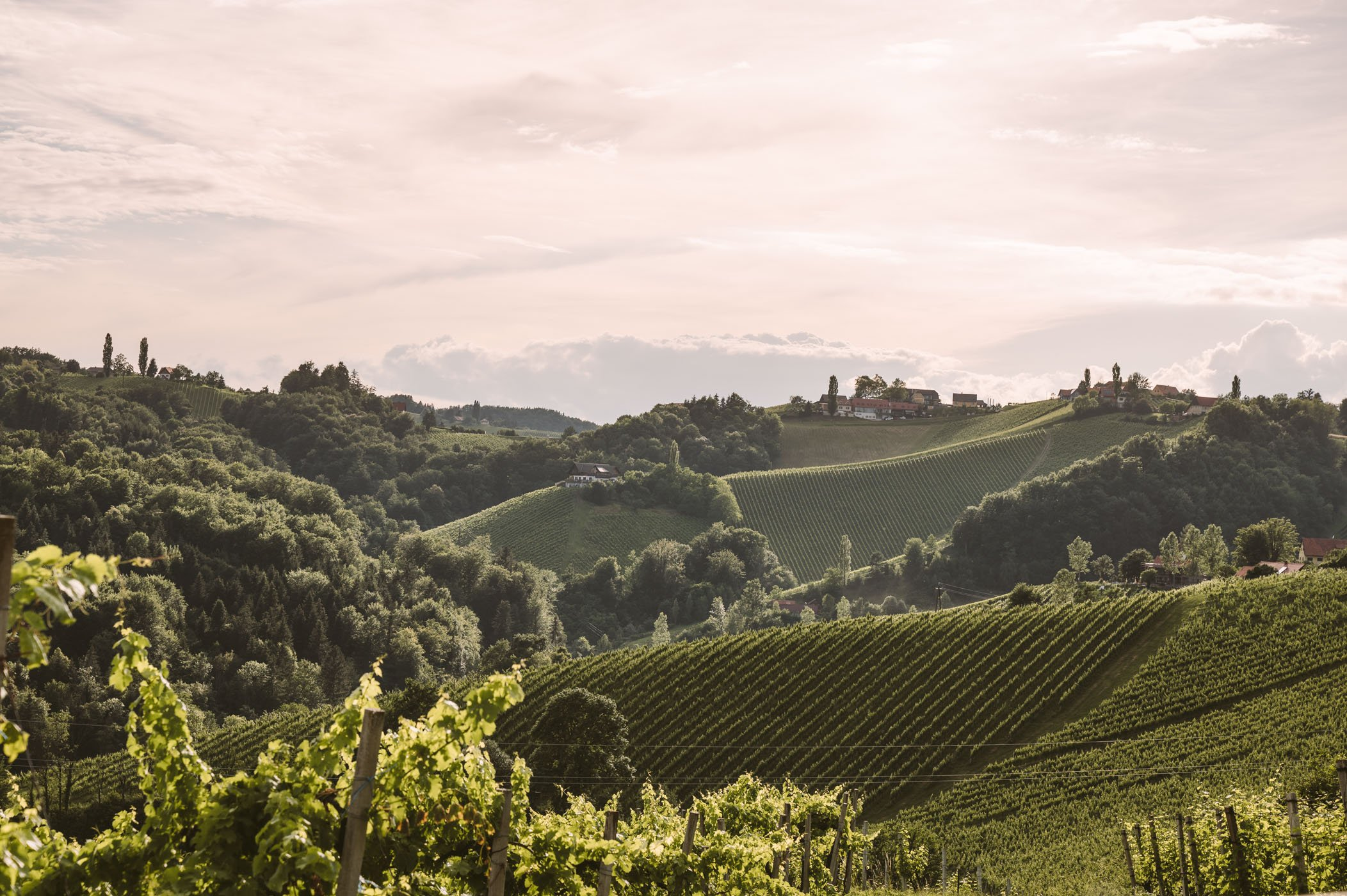 Southern Styria landscapes with rolling hills and vineyards