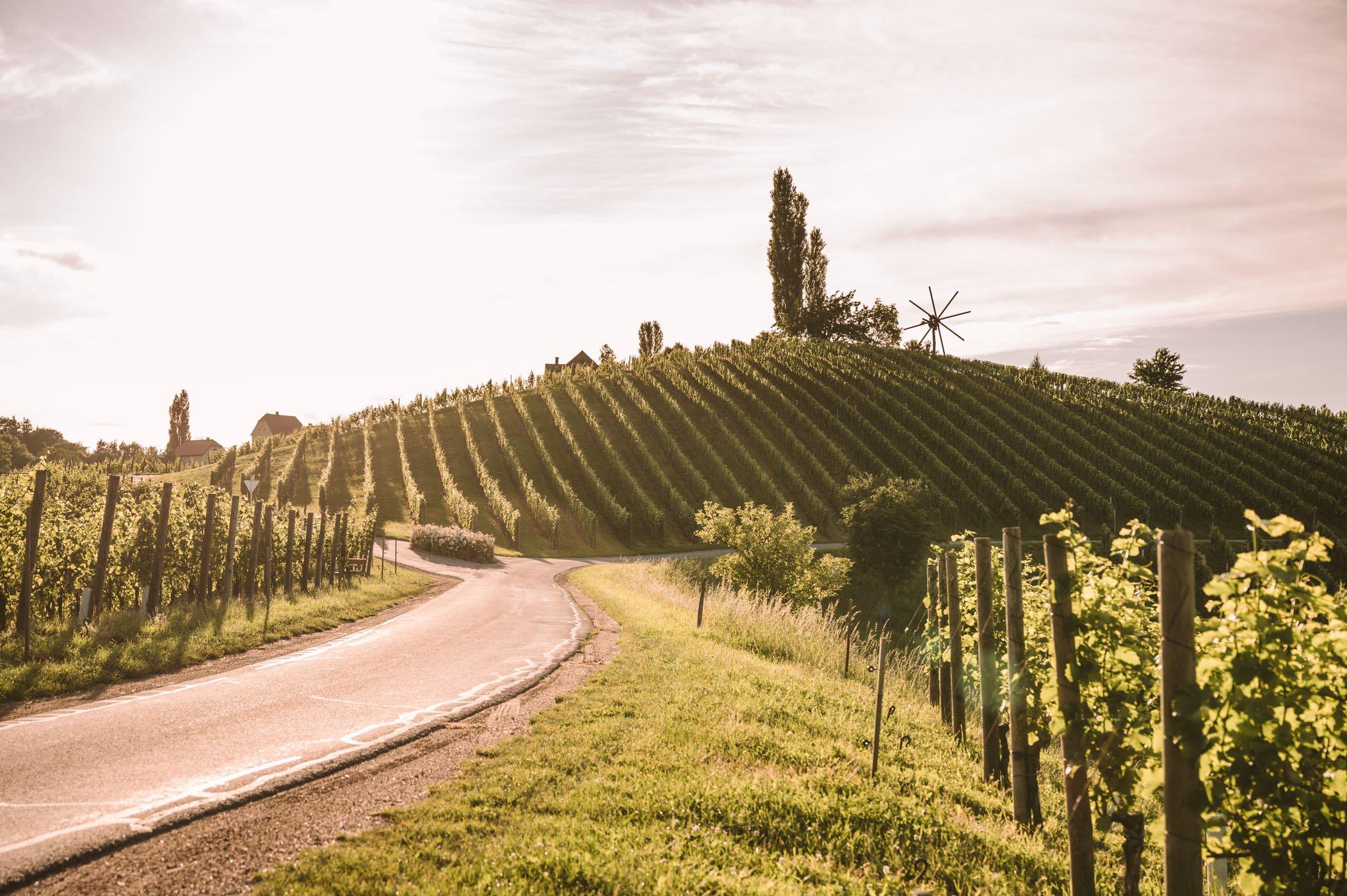 Southern Styria wine street