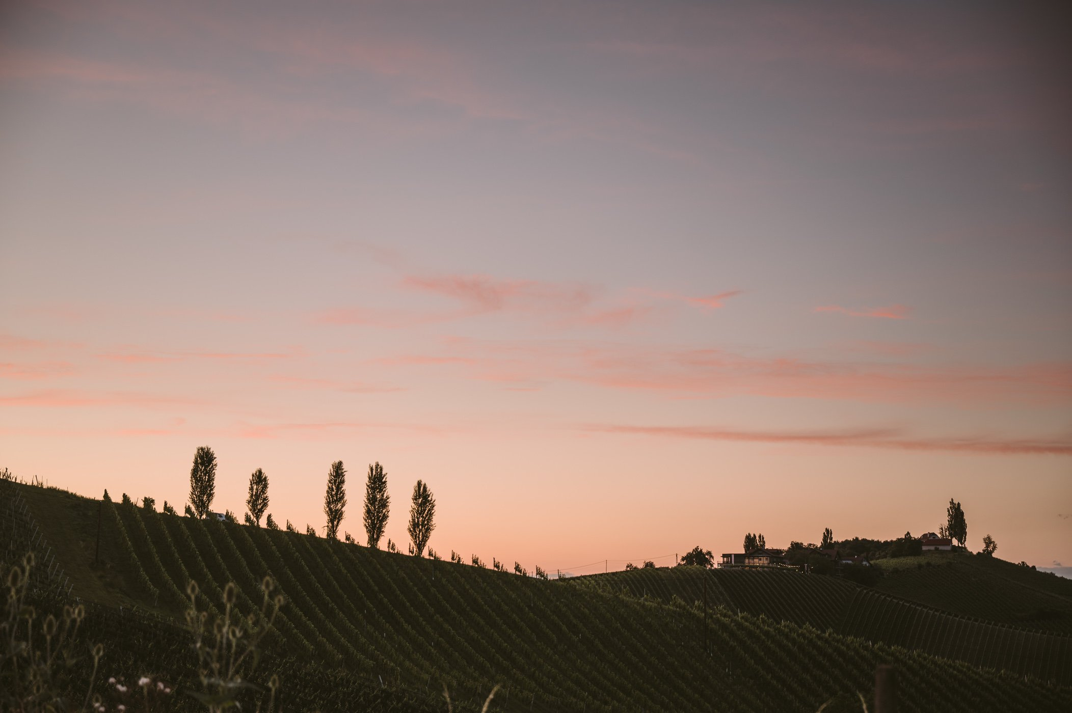 Southern Styria sunset over the vineyards