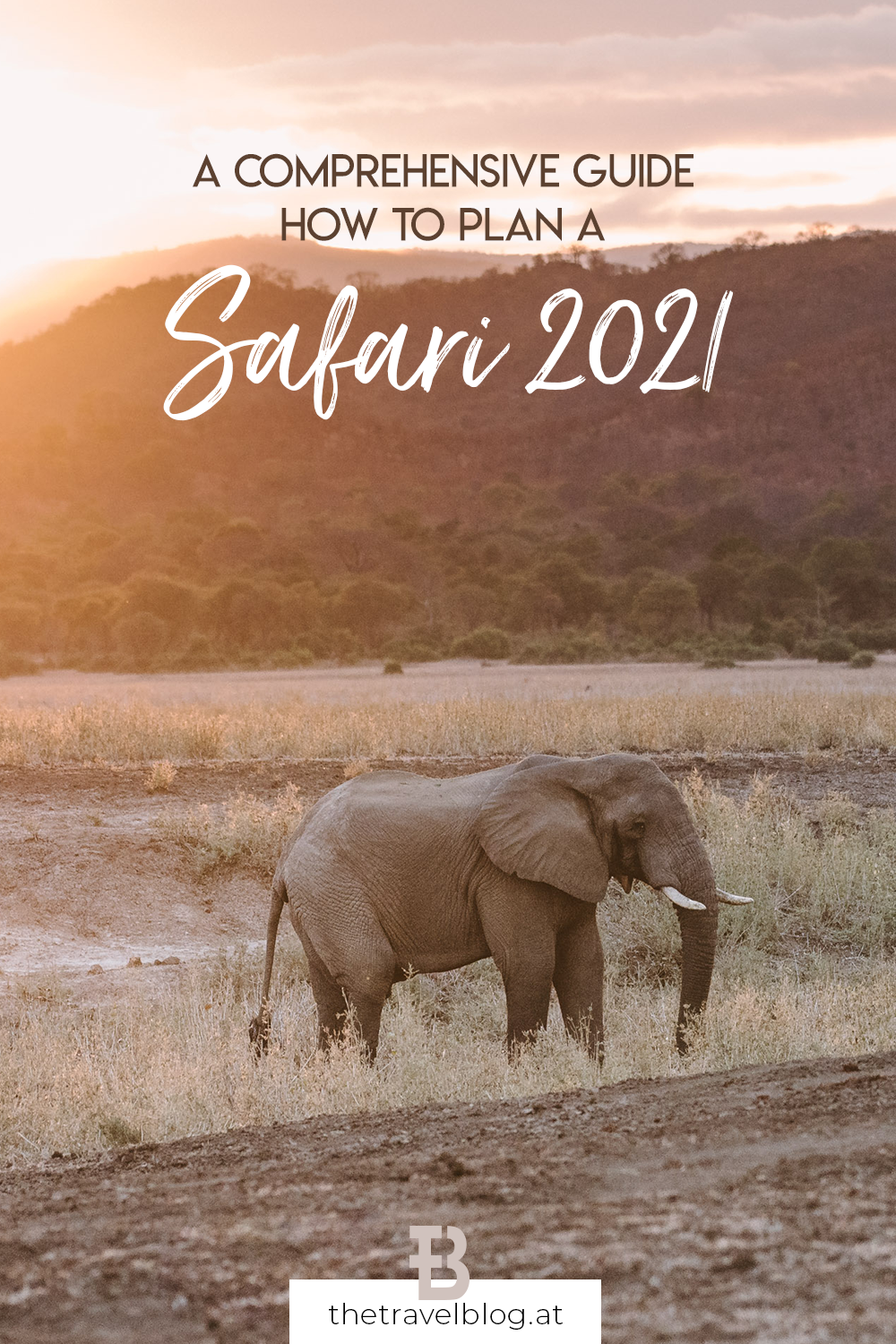 How to plan a safari in 2021 - a comprehensive guide to safari trips during COVID-19