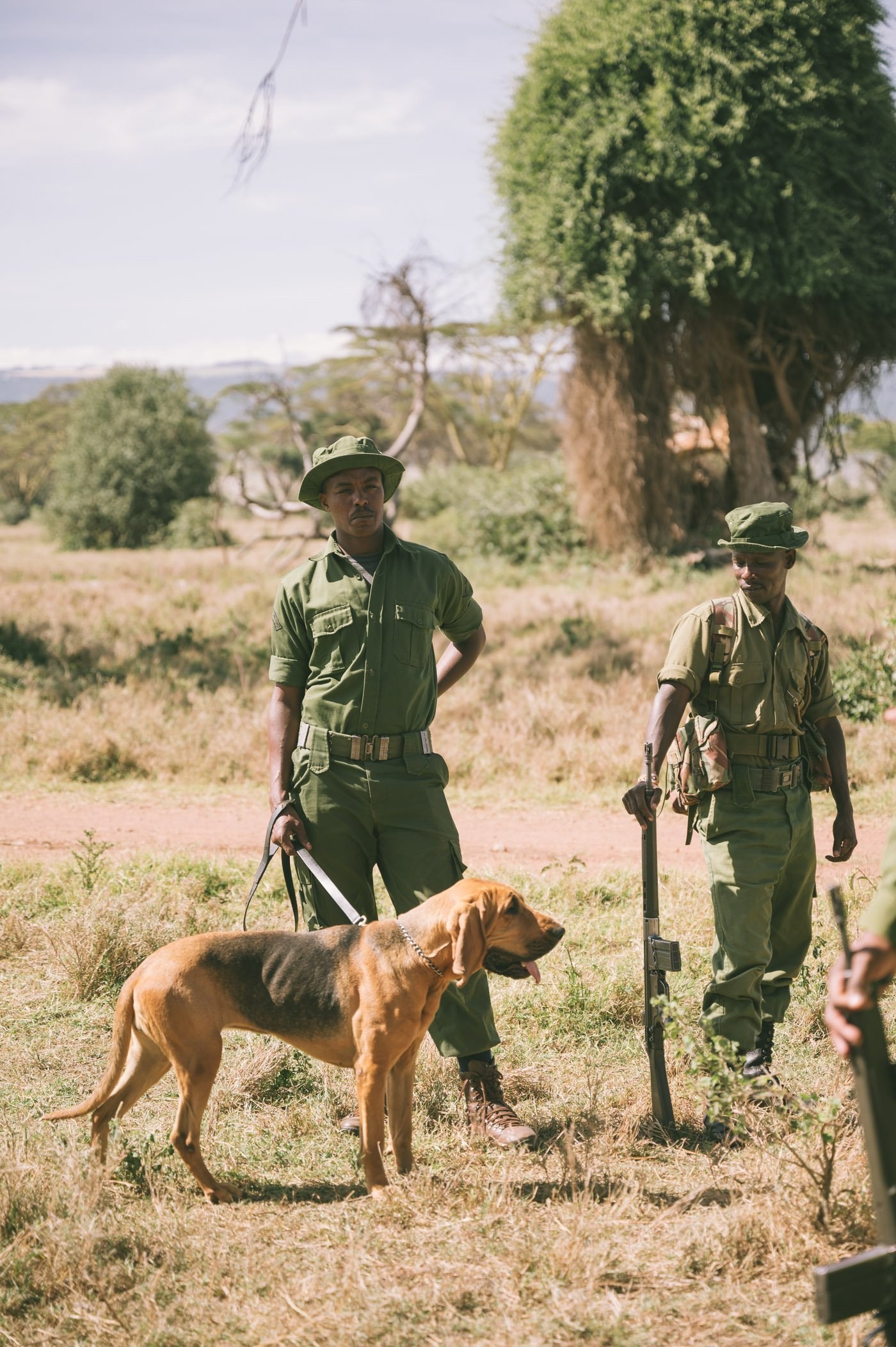 Dog unit at Lewa Conservancy Kenya