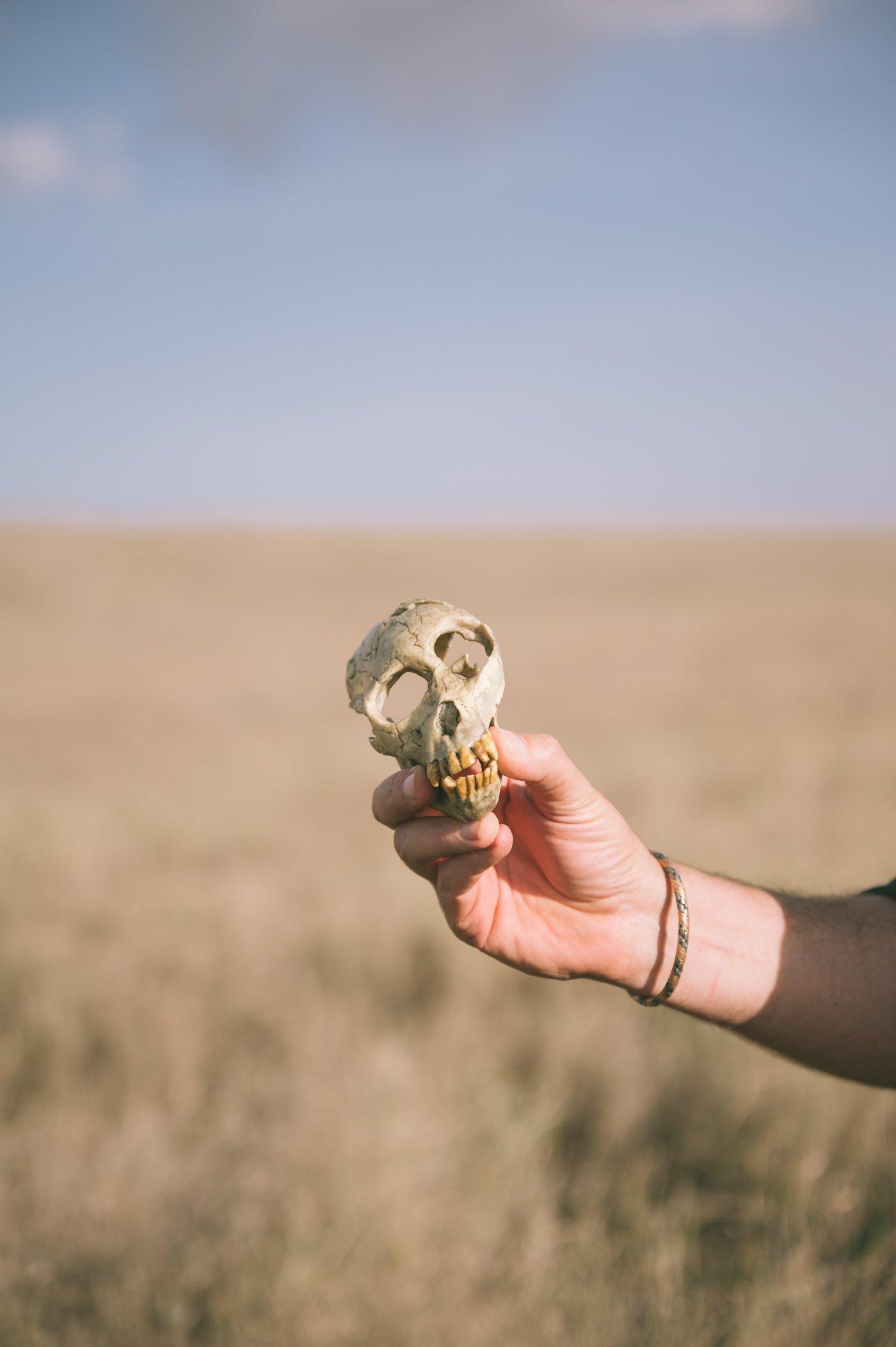 Hand Axe Site at Lewa Wildlife Conservancy Kenya