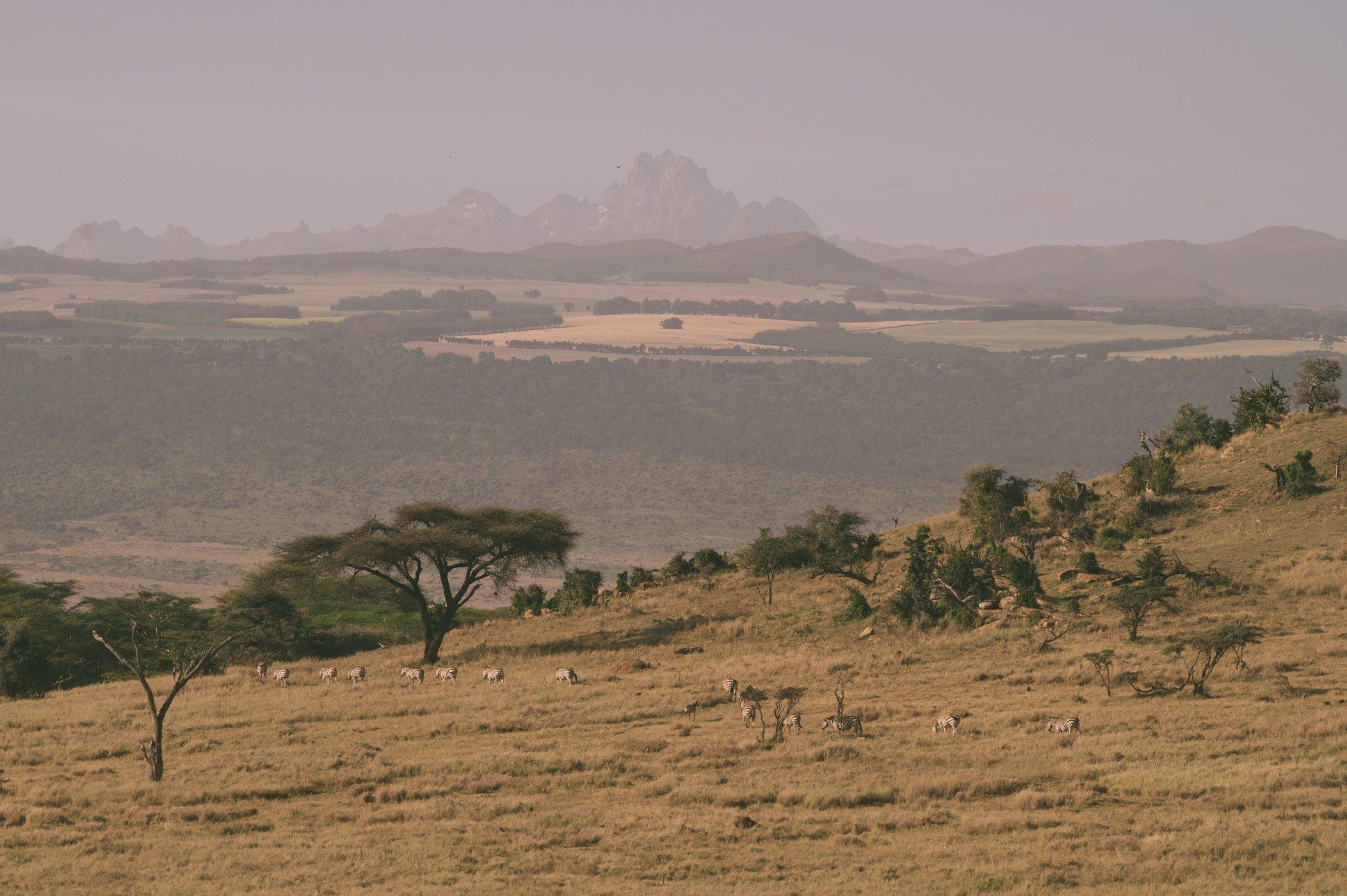 Mount Kenya as seen from Lewa Conservancy Kenya