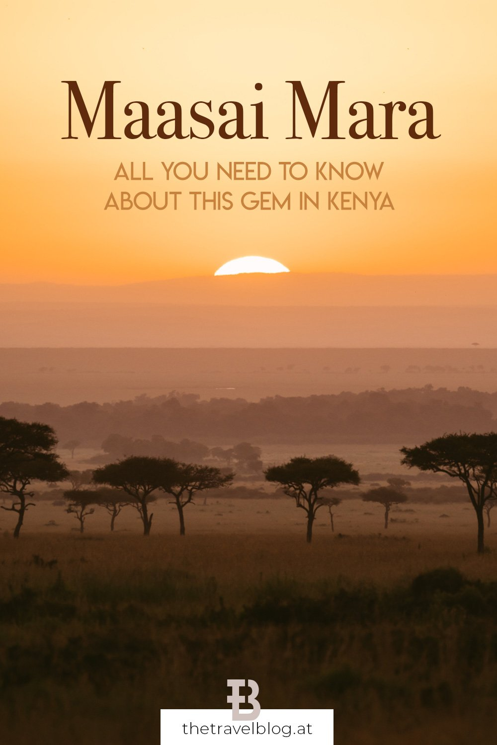 Everything you need to know about the Maasai Mara in Kenya