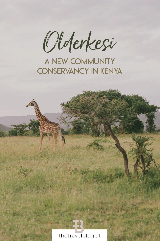Olderkesi Community Conservancy in Kenya