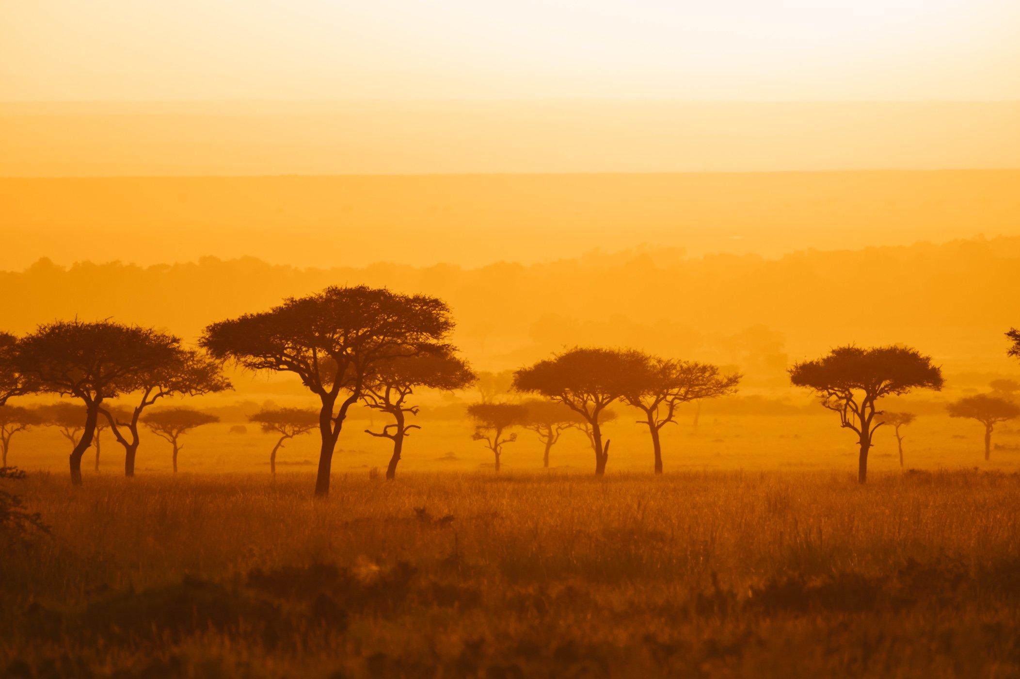 Sunrise in the Mara Triangle in Kenya