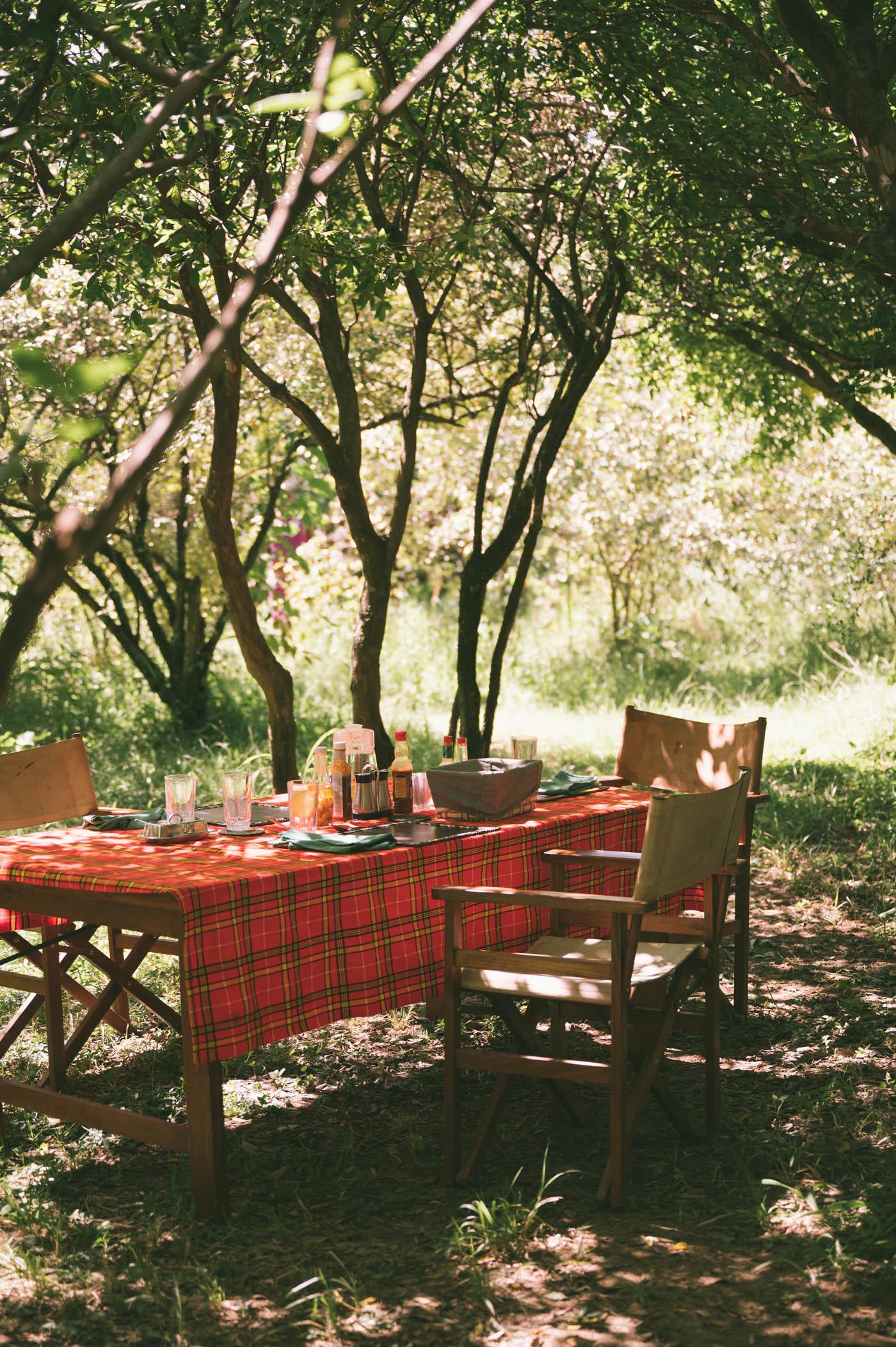 Lunch setting at Tangulia Mara Camp in the Maasai Mara in Kenya