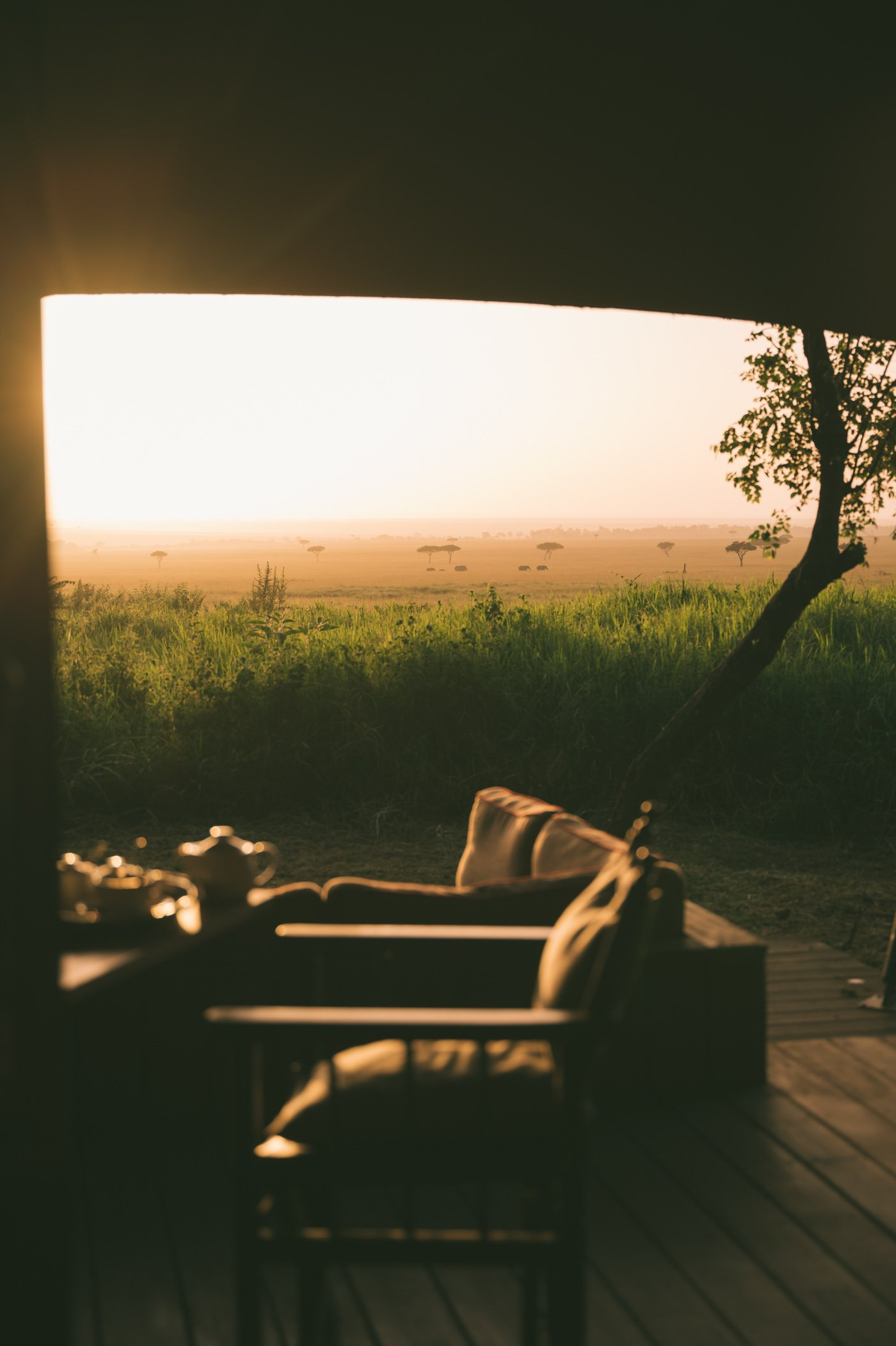 The deck of our room at andBeyond Bateleur Camp Maasai Mara Kenya