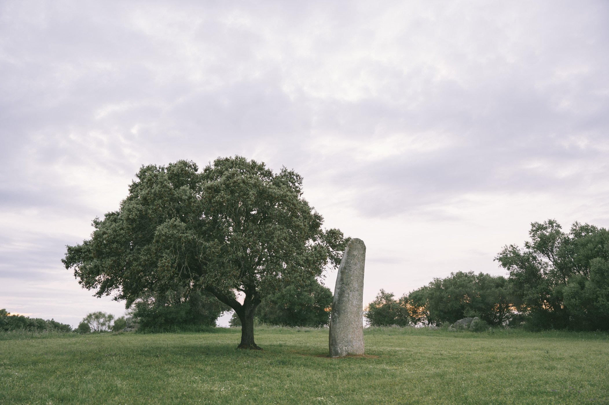 A menhir at São Lourenço do Barrocal estate in Alentejo Portugal