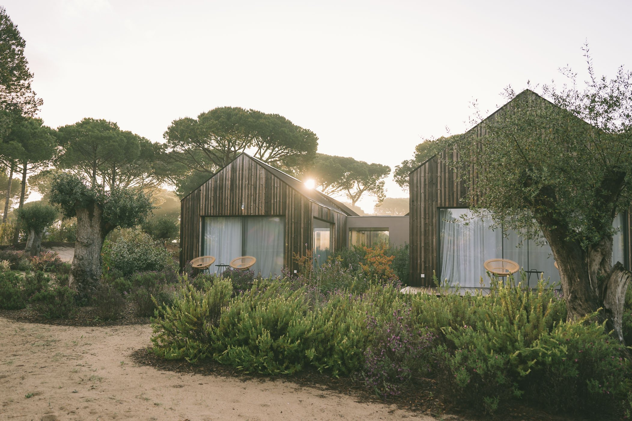 Sublime Comporta - cabana villas in the pine forest