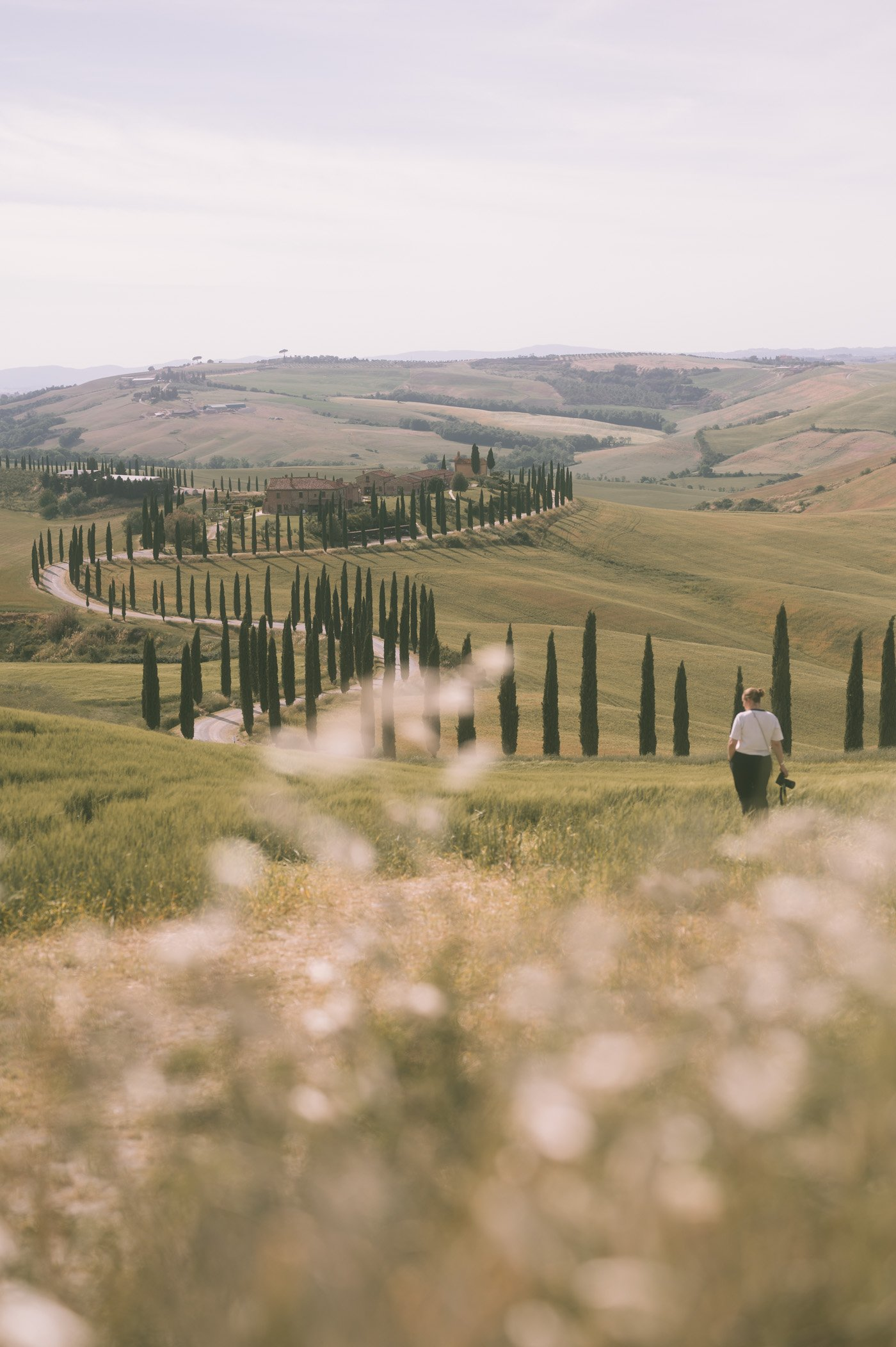Most famous road in Tuscany